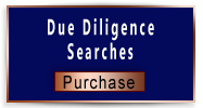 Purchase Due Diligence Searches